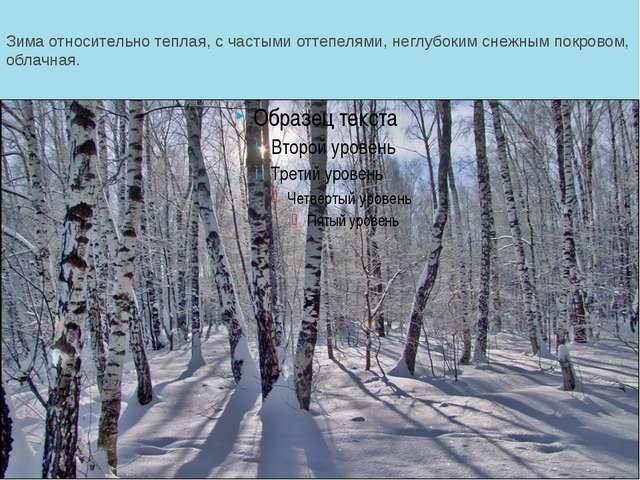 Зима относительно теплая, с частыми оттепелями, неглубоким снежным покровом,...