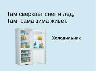 Там сверкает снег и лед, Там сама зима живет. Холодильник