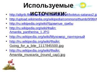 Используемые источники: http://allgrib.files.wordpress.com/2011/04/boletus-sa
