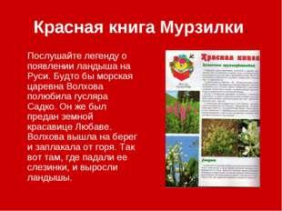 Красная книга Мурзилки. Послушайте легенду о появлении ландыша на Руси. Будто