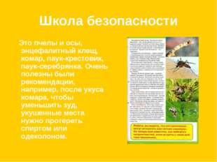 Школа безопасности Это пчелы и осы, энцефалитный клещ, комар, паук-крестовик,