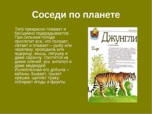 Соседи по планете Тигр прекрасно плавает и бесшумно подкрадывается. При сильн