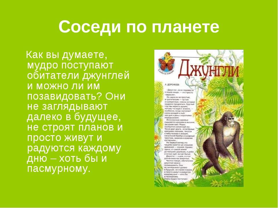 Соседи по планете Как вы думаете, мудро поступают обитатели джунглей и можно...