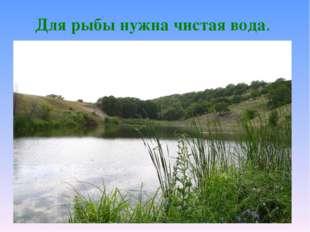 Для рыбы нужна чистая вода.
