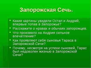 Запорожская Сечь. Какие картины увидели Остап и Андрий, впервые попав в Запор