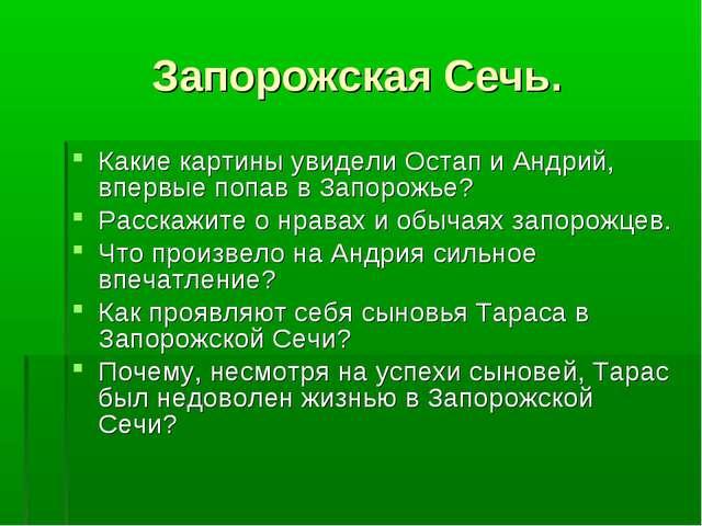 Запорожская Сечь. Какие картины увидели Остап и Андрий, впервые попав в Запор...