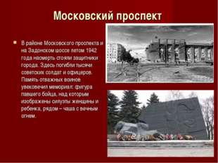 Московский проспект В районе Московского проспекта и на Задонском шоссе летом