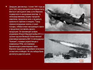 Двадцать два месяца, с осени 1941 года до лета 1943 город находился на боево