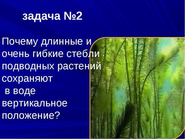 задача №2 Почему длинные и очень гибкие стебли подводных растений сохраняют в...