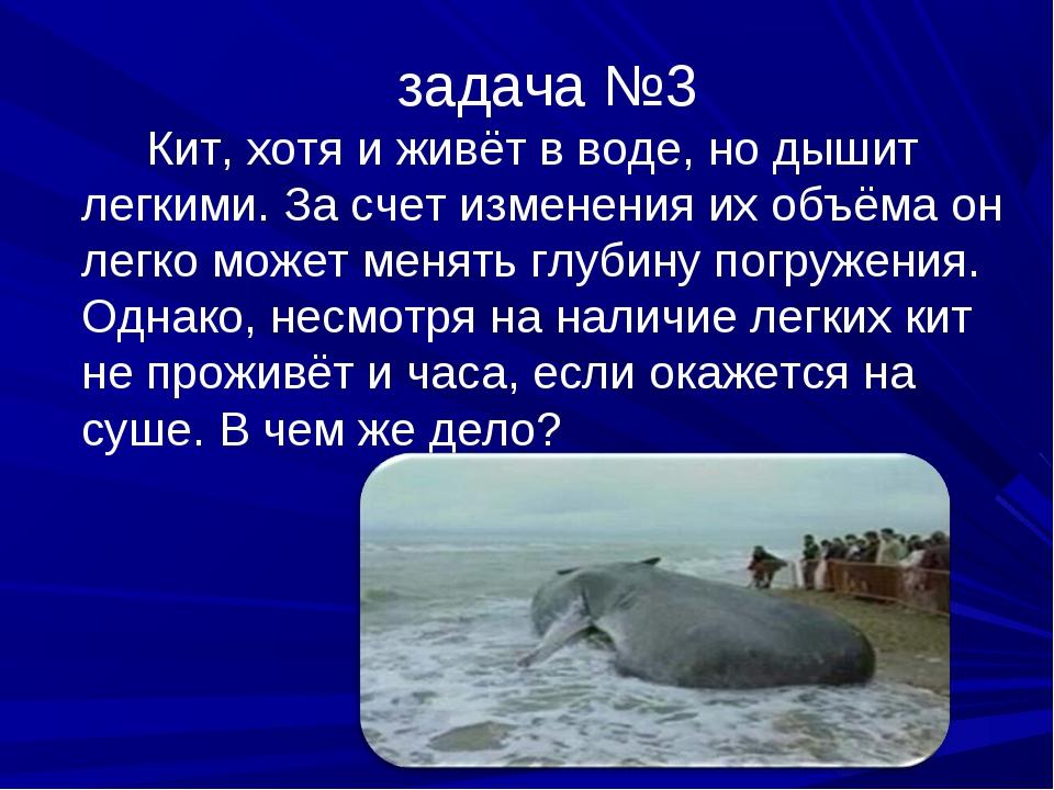 задача №3 Кит, хотя и живёт в воде, но дышит легкими. За счет изменения их об...