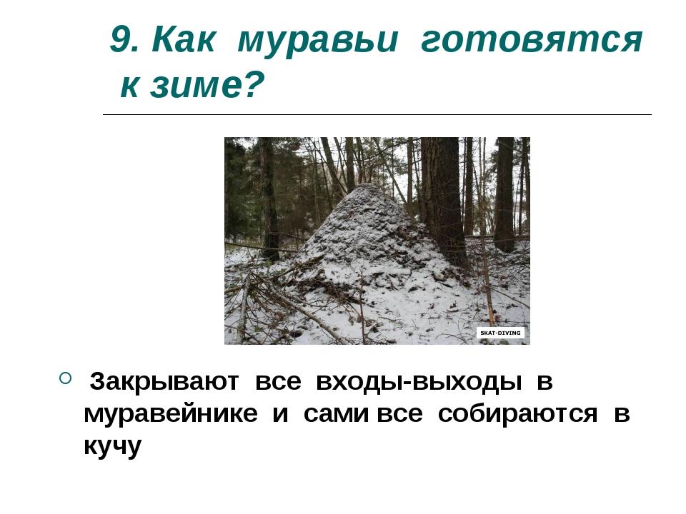 9. Как муравьи готовятся к зиме? Закрывают все входы-выходы в муравейнике и с...