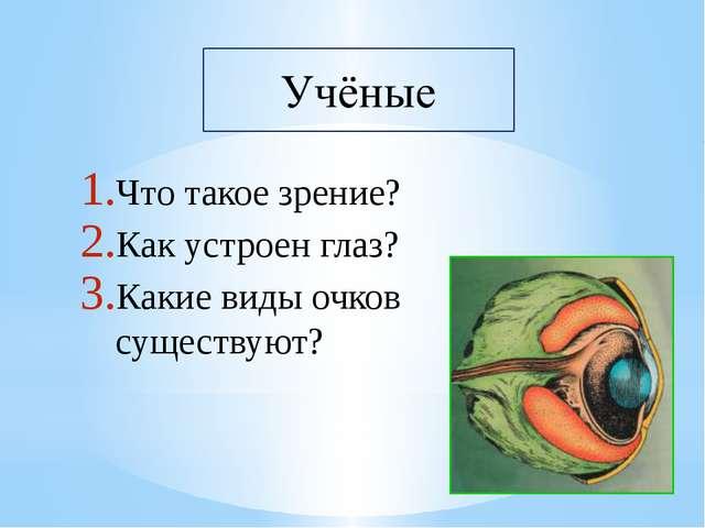 Что такое зрение? Как устроен глаз? Какие виды очков существуют?