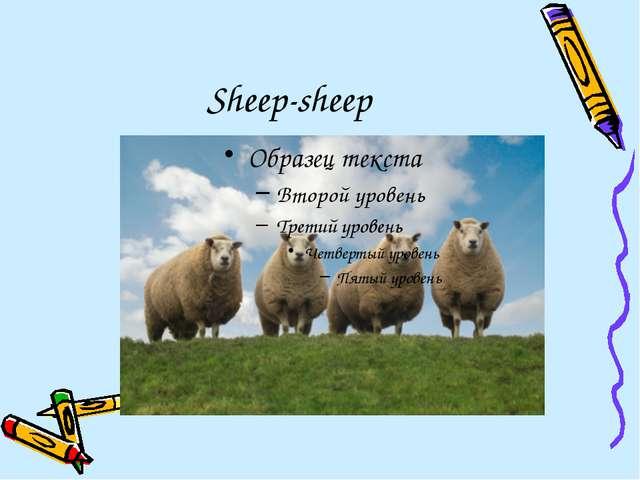 Sheep-sheep