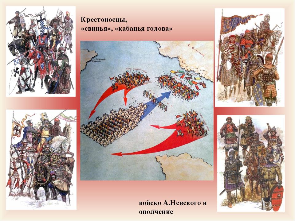 Крестоносцы, «свинья», «кабанья голова» войско А.Невского и ополчение