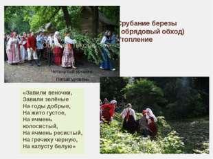 Срубание березы ( обрядовый обход) Утопление «Завили веночки, Завили зелёные