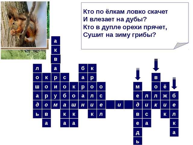 а ш н и е и ь о м в к а р в а д а о ш и л к у р а с о б о а к л о с к р о л к...