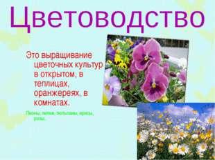 Это выращивание цветочных культур в открытом, в теплицах, оранжереях, в комна