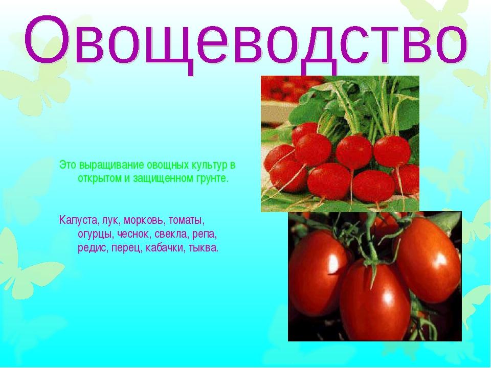 Это выращивание овощных культур в открытом и защищенном грунте. Капуста, лук,...