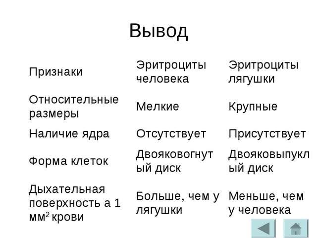 Состав крови лягушки и человека