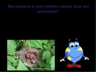 Вы увидели в лесу птичье гнездо. Как вы поступите? Птица, чье гнездо было пот