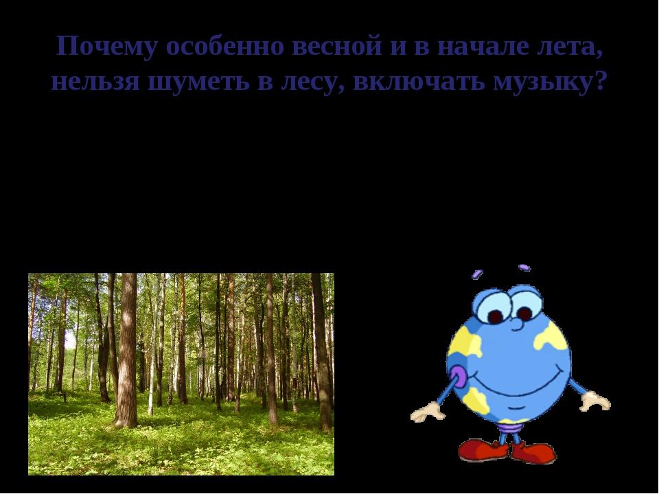Почему особенно весной и в начале лета, нельзя шуметь в лесу, включать музыку...