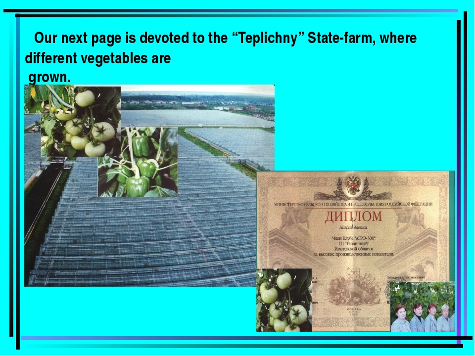 "Our next page is devoted to the ""Teplichny"" State-farm, where different vege..."