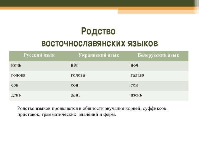 Родство восточнославянских языков Родство языков проявляется в общности звуча...