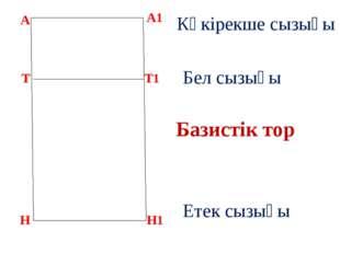 А Базистік тор А1 Т Н Т1 Н1 Көкірекше сызығы Бел сызығы Етек сызығы