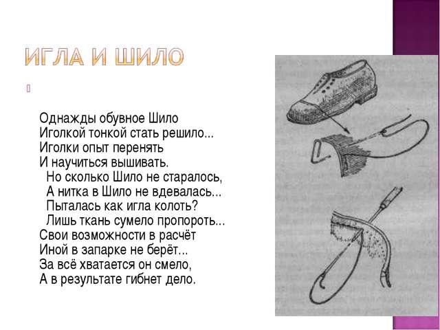 Однажды обувное Шило Иголкой тонкой стать решило... Иголки опыт перенять И н...