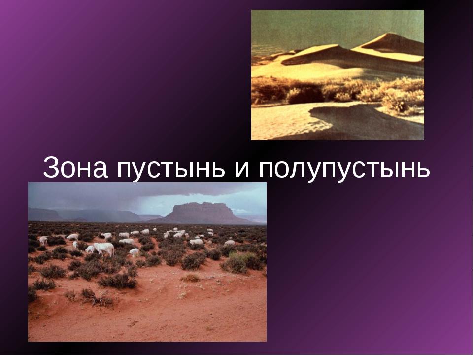 Зона пустынь и полупустынь