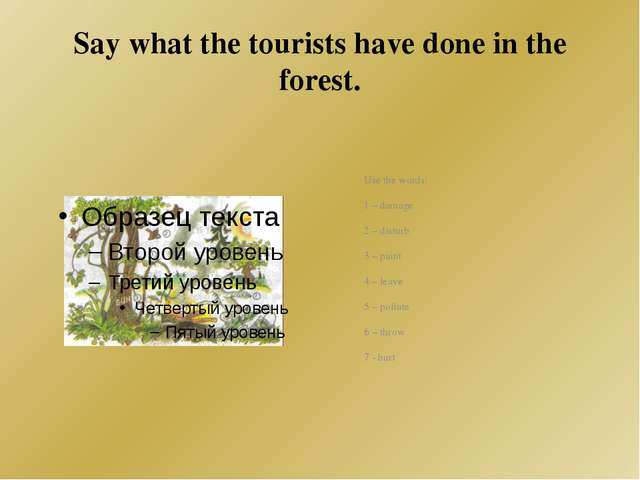 Say what the tourists have done in the forest. Use the words: 1 – damage 2 –...