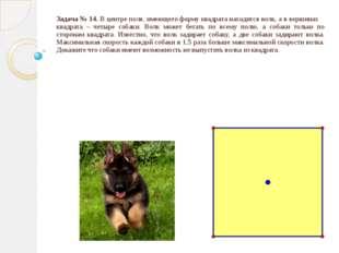 Задача № 14. В центре поля, имеющего форму квадрата находится волк, а в верши