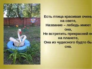 Есть птица красивая очень на свете, Название – лебедь имеет она, Не встретить