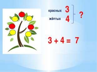 красных жёлтых 3 4 ? 3 + 4 = 7