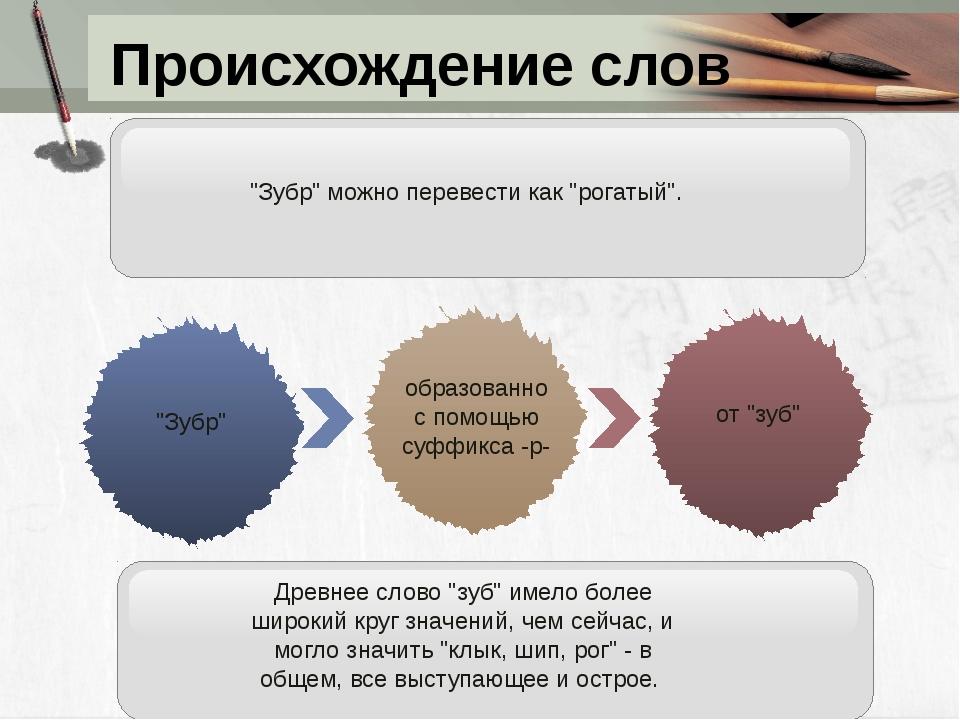 """Происхождение слов от """"зуб"""" """"Зубр"""" образованно с помощью суффикса -р- Древнее..."""
