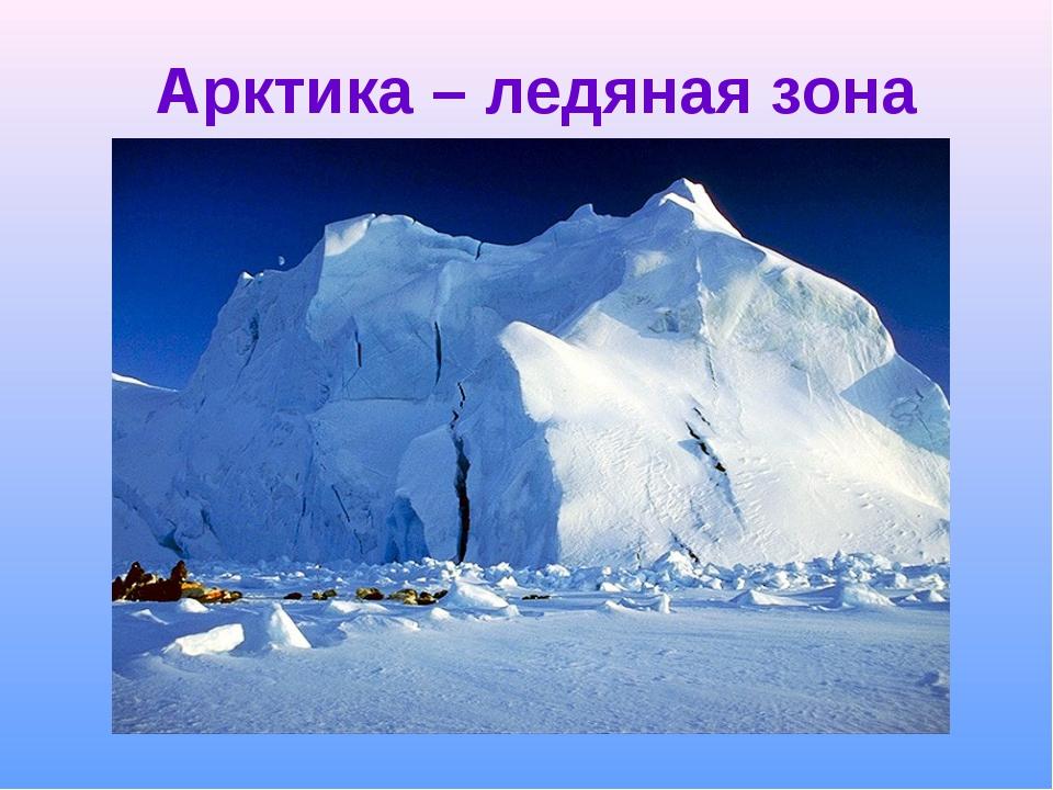 Арктика – ледяная зона