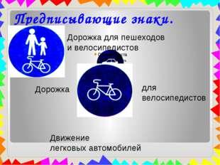 Предписывающие знаки. Дорожка для пешеходов и велосипедистов Дорожка для вело