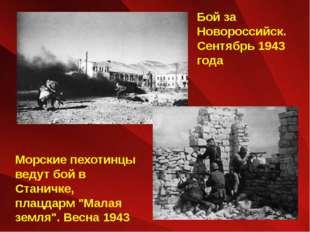 Бой за Новороссийск. Сентябрь 1943 года Морские пехотинцы ведут бой в Станичк