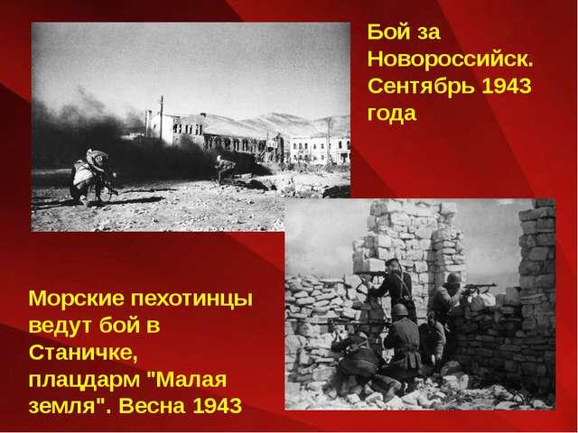 Бой за Новороссийск. Сентябрь 1943 года Морские пехотинцы ведут бой в Станичк...