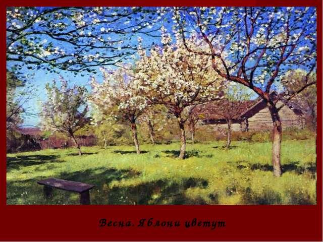 Весна. Яблони цветут
