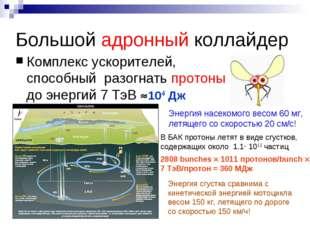 Большой адронный коллайдер Комплекс ускорителей, способный разогнать протоны
