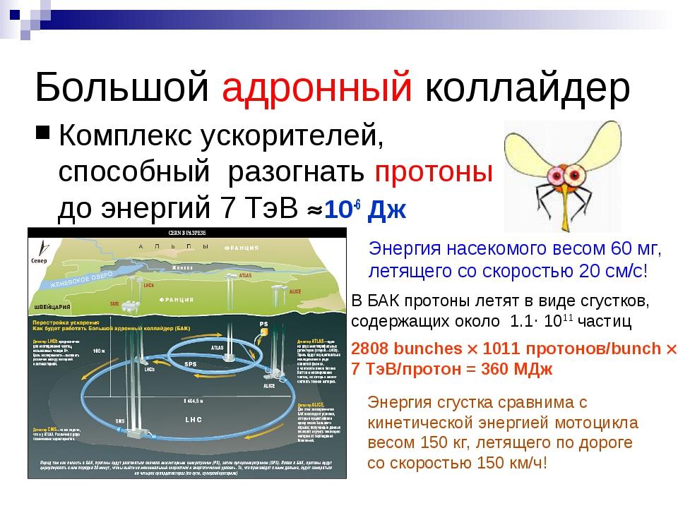 Большой адронный коллайдер Комплекс ускорителей, способный разогнать протоны...