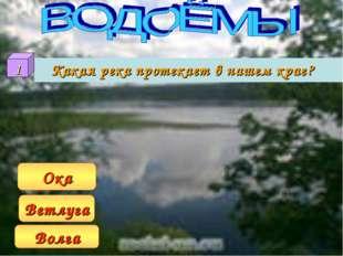 Какая река протекает в нашем крае? Волга Ветлуга Ока 1