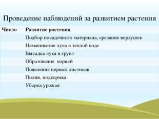 Проведение наблюдений за развитием растения Число Развитие растения Подбор по