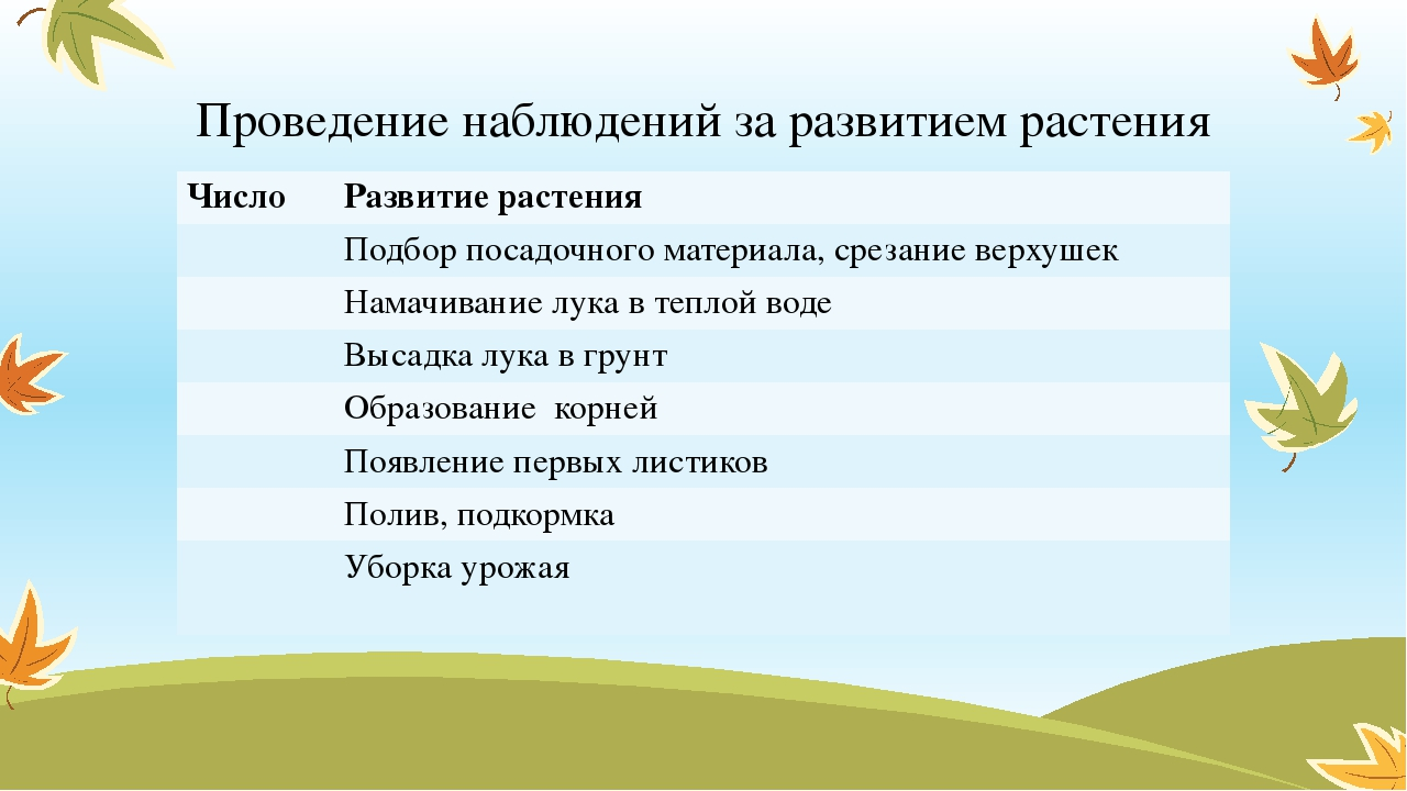 Проведение наблюдений за развитием растения Число Развитие растения Подбор по...