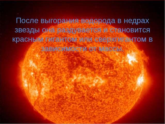 После выгорания водорода в недрах звезды она раздувается и становится красным...