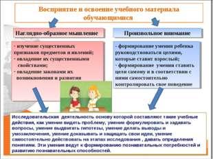 Восприятие и освоение учебного материала обучающимися Наглядно-образное мышле
