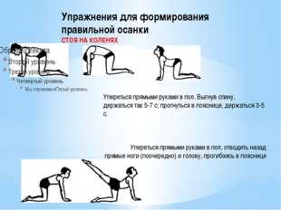 Упражнения для формирования правильной осанки СТОЯ НА КОЛЕНЯХ Упереться прямы