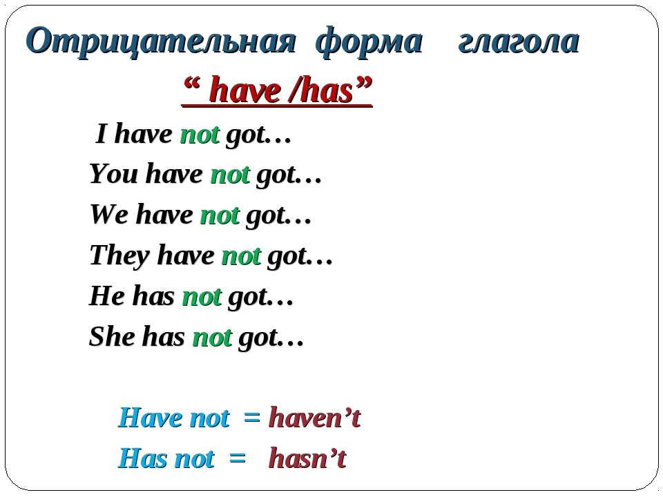 "Отрицательная форма глагола "" have /has"" I have not got… You have not got… W..."