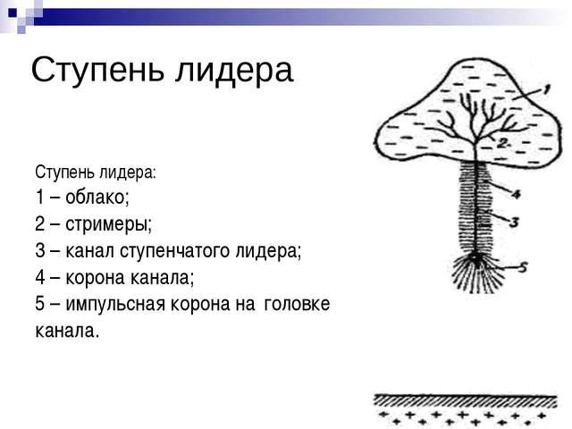 Ступень лидера: 1 – облако; 2 – стримеры; 3 – канал ступенчатого лидера; 4 –...